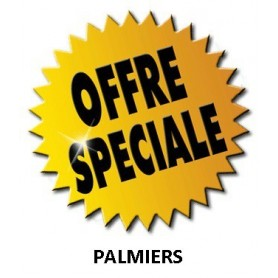 VIP PACK PALMIERS X8