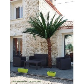 Palmier semi-naturel 2m50 en location vendee